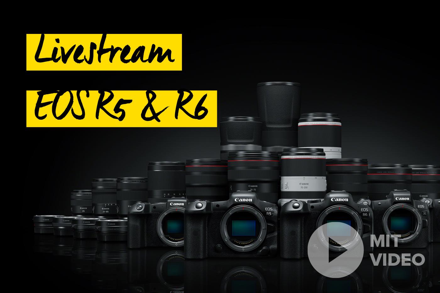 Canon EOS R5 Kamera und Objektive Livestream